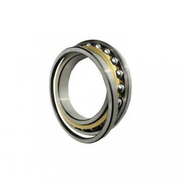 Csk25 Csk25PP Csk25 2RS 6205 Sealed Motor Bearing